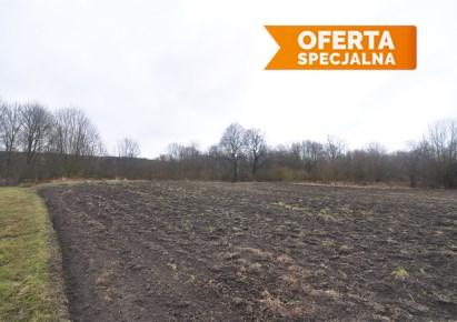 działka na sprzedaż - Koniusza, Dalewice